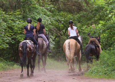 Montellano, un magnífico lugar para descansar